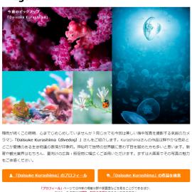 クリエイター紹介メルマガ「imagenavi 今旬作家」第二十七弾配信